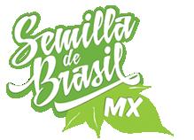 logotipo semilla de brasil
